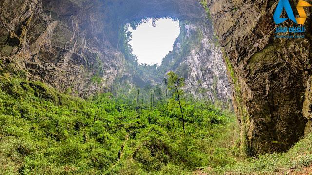 سقف بسيار مرتفع غار سون دونگ ويتنام