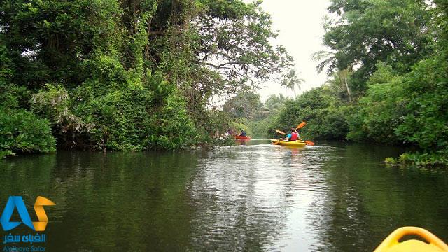 کایاکینگ و قایق سواری در رودخانه های گوا هند