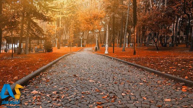 پارک و درختان پائیزی